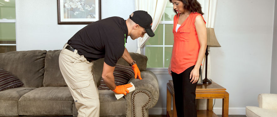 Altoona, PA carpet upholstery cleaning